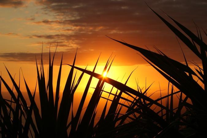 sunset-379651_1280