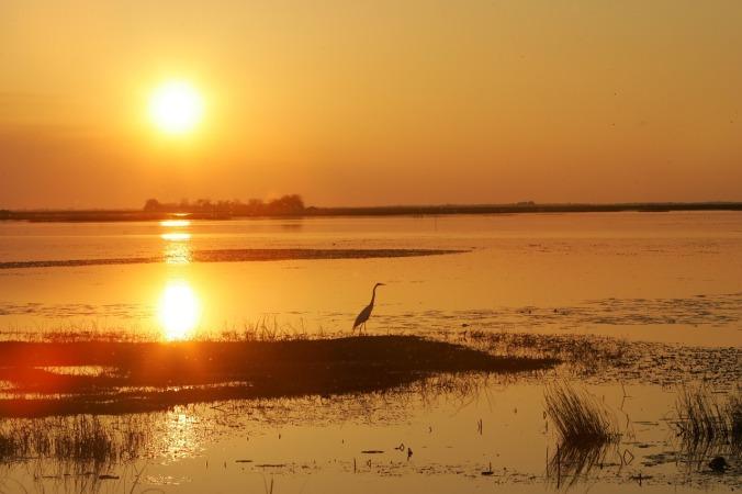 sunset-1049572_1280