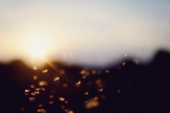sunset-924163_1280