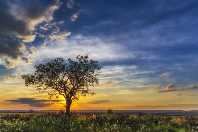 sunset-1300192_1280