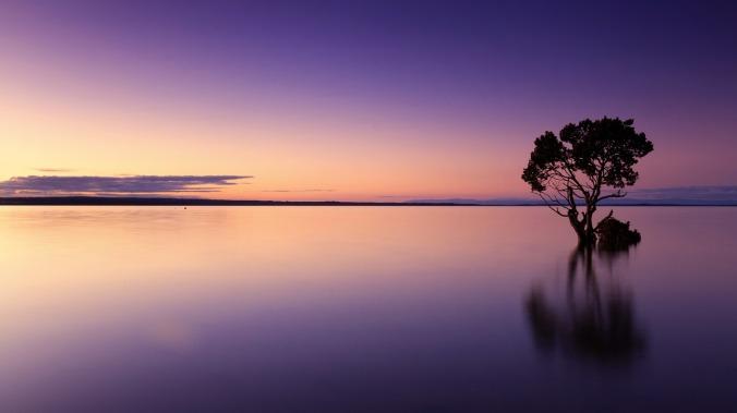 sunset-1373171_1280