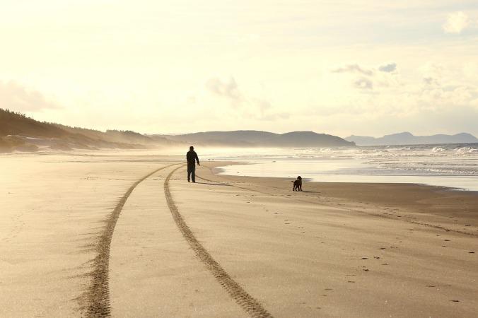 beach-1480915_1280