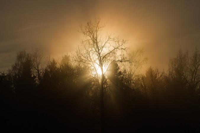 sunset-1367138_1280