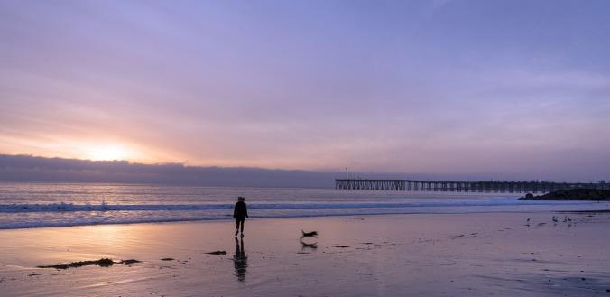 beach-1302118_1280