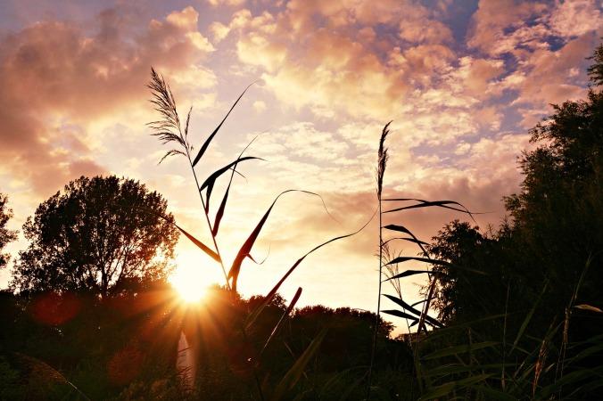 sunset-1612467_1280