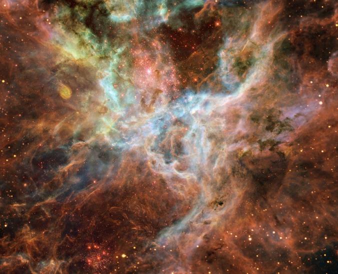 tarantula-nebula-1245253_1280