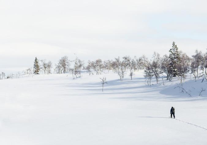 winter-1246197_1280