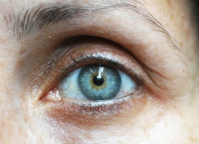 eyebrow-1792296_1280