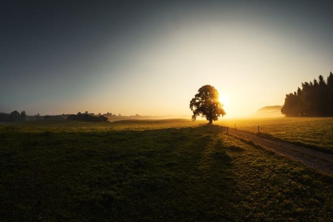 sunrise-1696760_1280