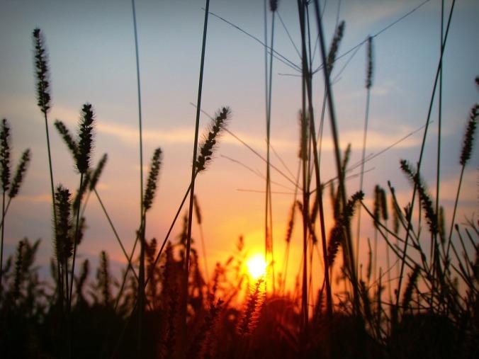 sunset-1872229_1280