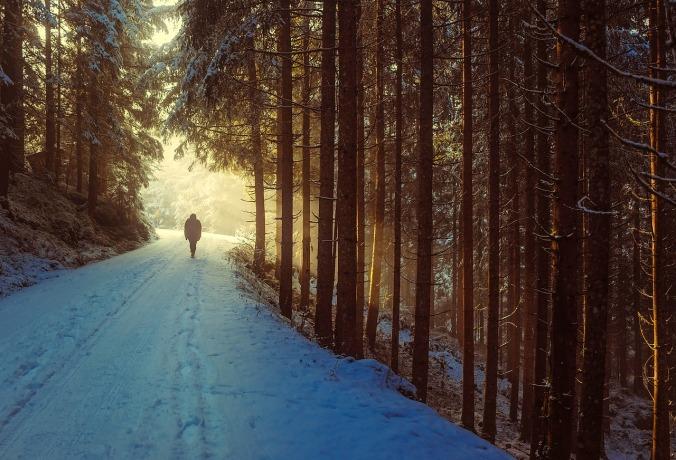 winter-1936638_1280