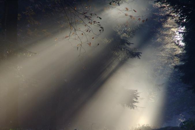 sunbeam-76825_1920